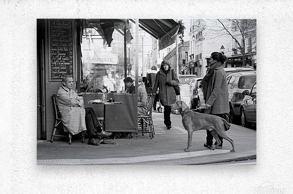 Street Life in Le Marais  Metal print