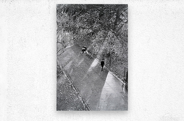Winter Shadows Buttes Chaumont  Metal print