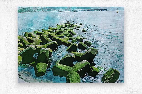 Wall Nature Decoration 7  Metal print