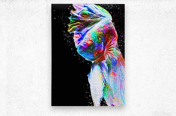 Betta Fish Lover 24  Metal print