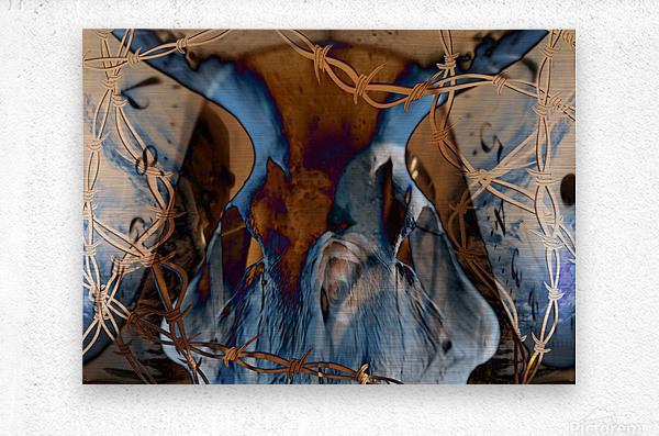 Western Grunge  Metal print
