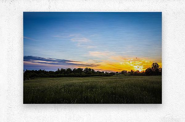 Creekside Sunset 2  Metal print
