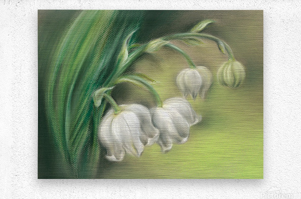 Lily of the Valley Flowers  Metal print