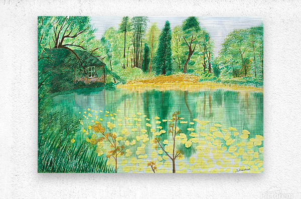 Wallington Hall pond  Metal print