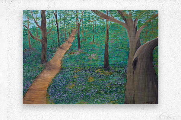 Bluebell woods oxford  Metal print