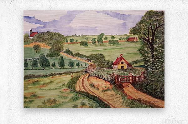 Village countryside  Metal print