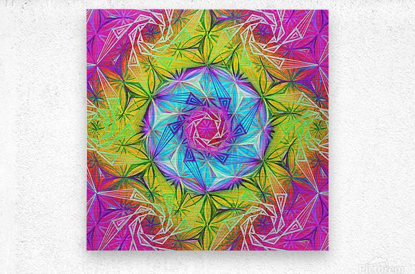Spirals Kaleidoscope Ciclamen Lame  Metal print