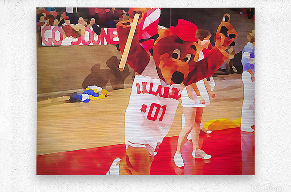 college mascot art top daug oklahoma sooners basketball art  Metal print
