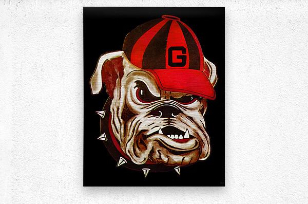 1966 Georgia Bulldog  Metal print
