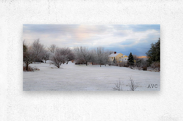 Winter Cottage  Metal print