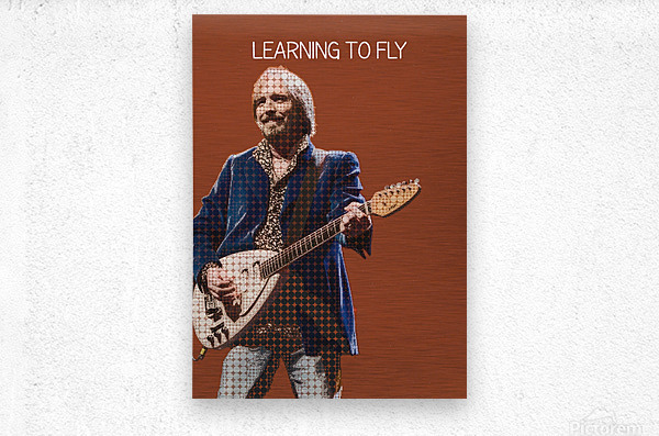 Learning To Fly   Tom Petty & the Heartbreakers  Metal print