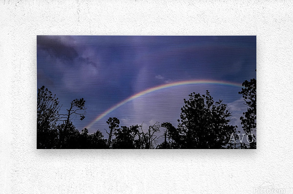 Double Rainbow Connection  Metal print