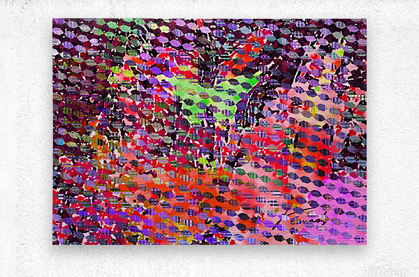 78C02C4F ADD7 4E77 961F D86DDE57BE2E  Metal print
