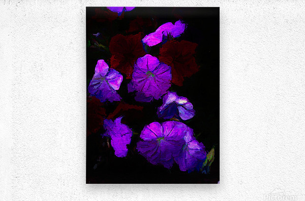 Evening Flowers  Metal print