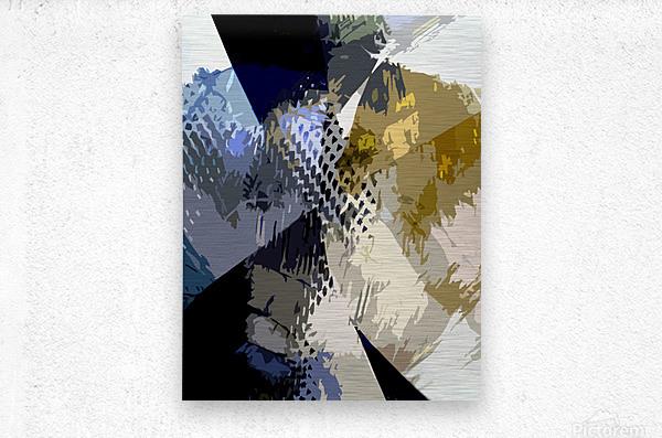 S H I A  Metal print