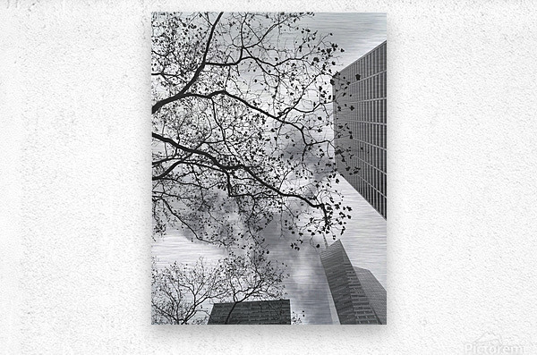 NYC Placement  Metal print