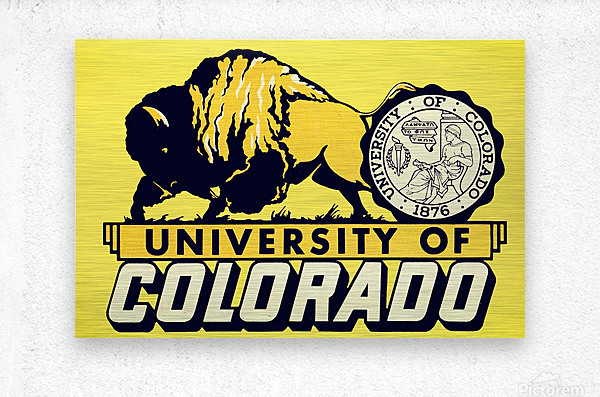 1950s vintage college art university of colorado buffaloes boulder  Metal print