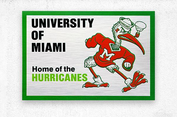 university of miami home of the hurricanes  Metal print