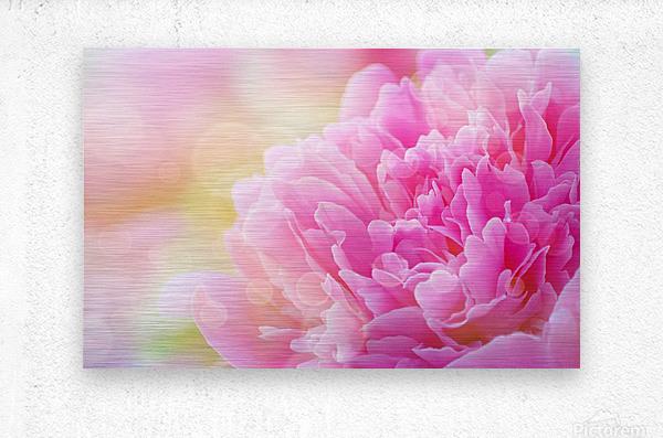 Pink Dream  Metal print