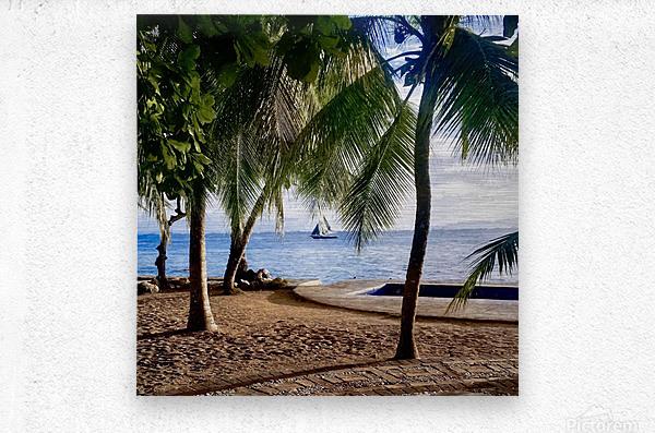Sailboat And Palms  Metal print