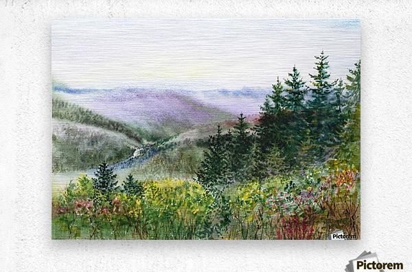 Landscape With Redwood Creek   Metal print