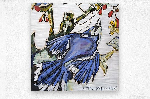 Louisiana Blue Jay Study on Wood  Metal print