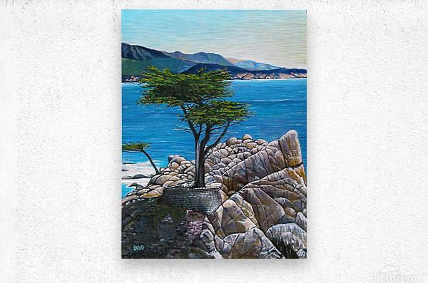 Lone Tree at Pebble Beach  Metal print