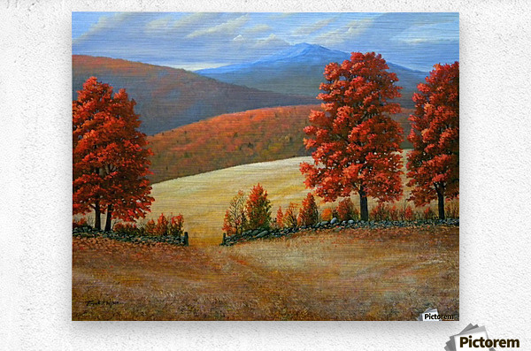 Autumns Glory  Metal print