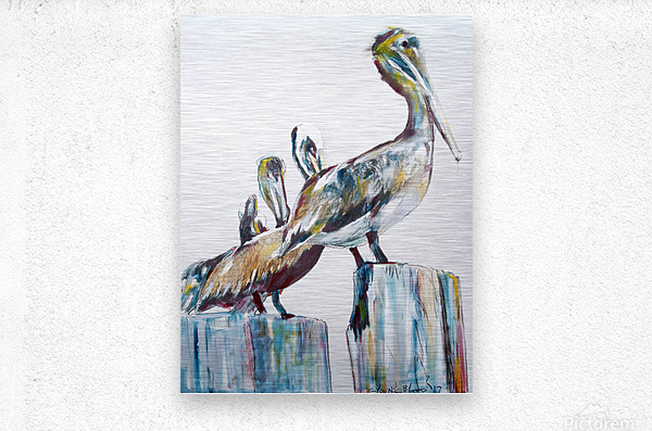 Bold Louisiana Pelicans in the Fog  Metal print