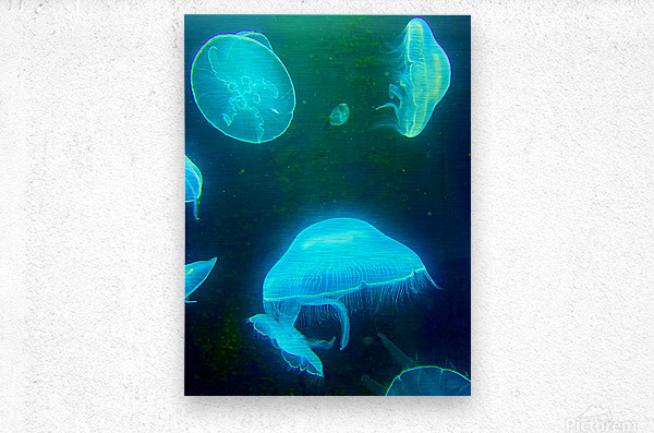 Venture into the Abyss  Metal print