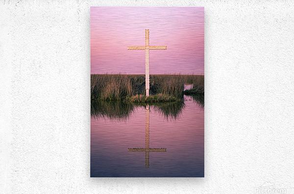 Double Crossed  Metal print