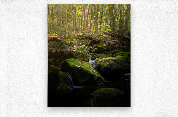 From afar what holds you near  Metal print