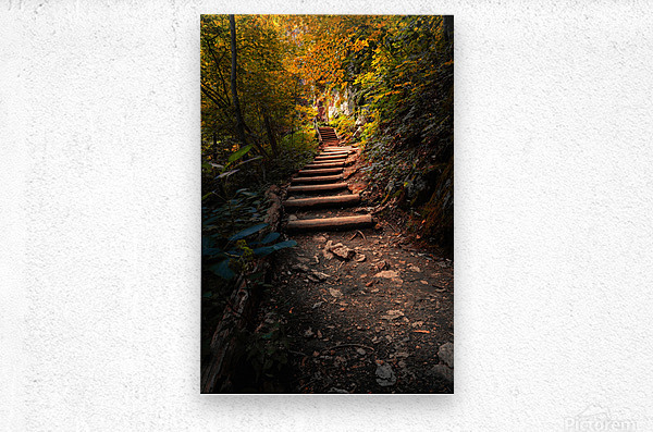 Climbing Colors  Metal print