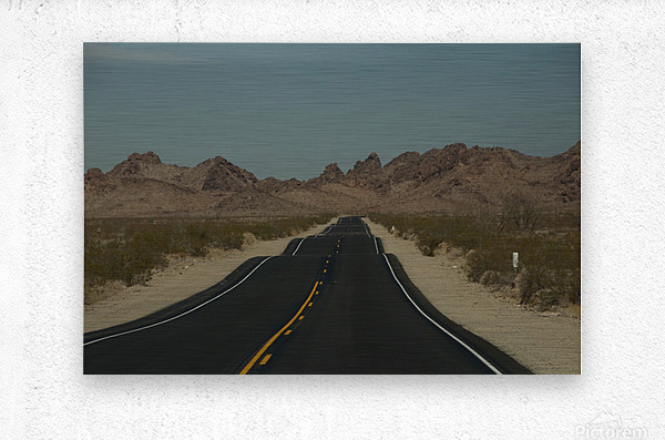 Desert Wave  Metal print