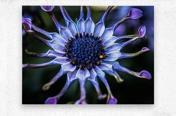 purple alien  Metal print