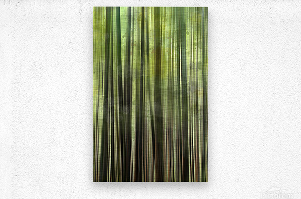 Tree Growth  Metal print