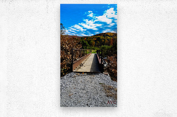 Rugby Pitch Bridge-- Autumn  Metal print