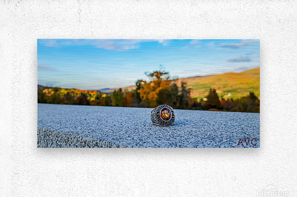 One for the Ring-- Autumn  Metal print