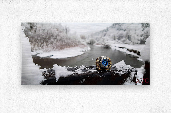 One for the Ring-- Winter  Metal print