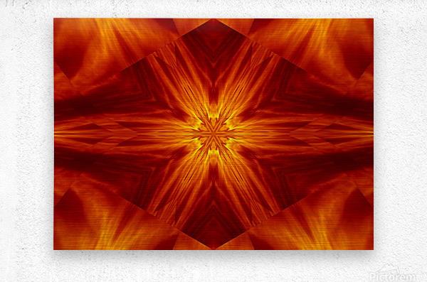 Fire Flowers 2  Metal print