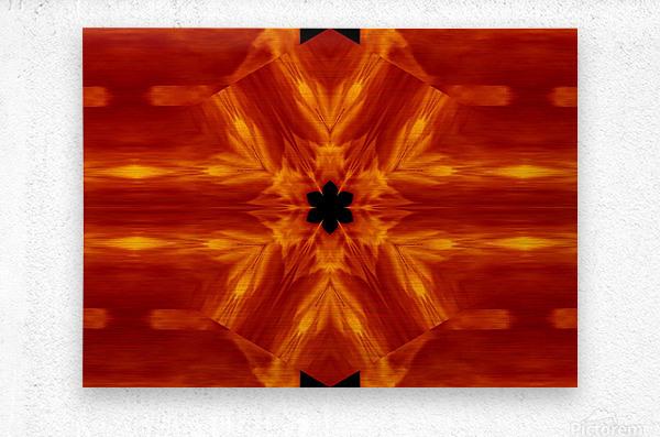 Fire Flowers 62  Metal print