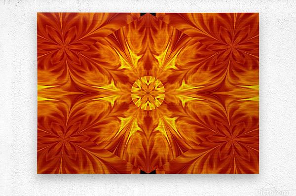 Fire Flowers 69  Metal print