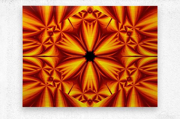 Fire Flowers 103  Metal print