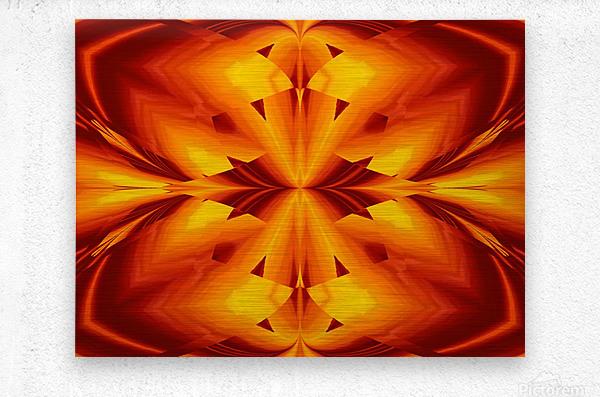Fire Flowers 109  Metal print