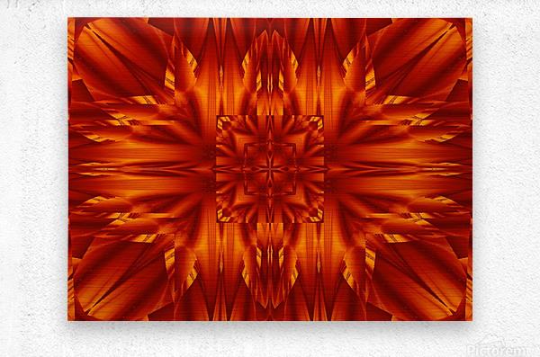 Fire Flowers 190  Metal print