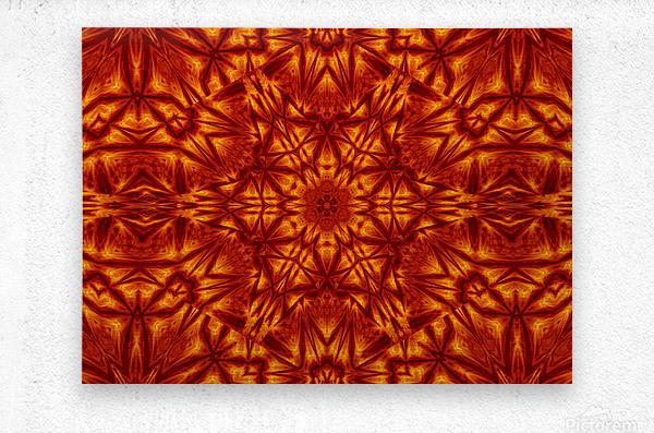 Fire Flowers 207  Metal print