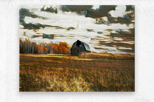 barn um lisadrewphotos  Metal print