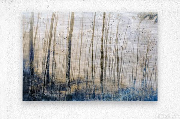 Tree Dreams in Blue  Metal print