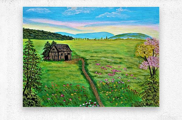 Sweet Little Home on Plains  Metal print