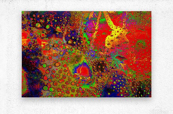 20200901_093416  Metal print